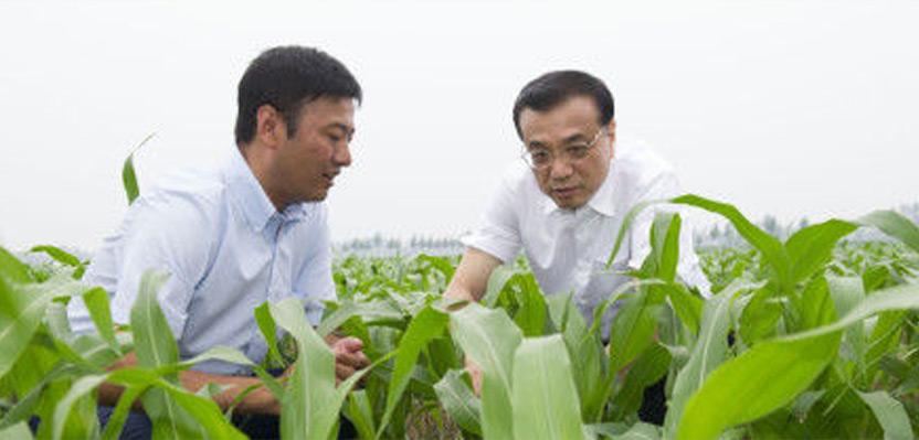 一号文件解读:中国要强 农业必须强
